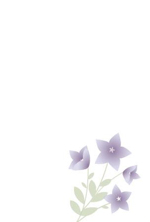 桔梗の花の喪中はがきさきちん絵葉書